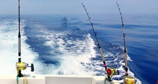 Deep Sea Fishing Tips