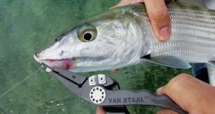 10 essential fishing tools