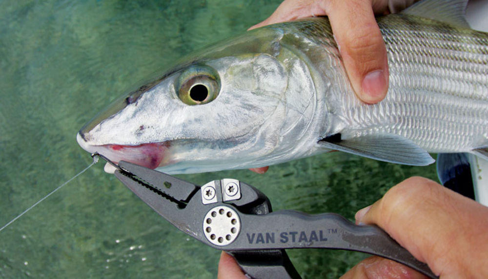 10 essential fishing tools and accessories you must bring for Best fishing pliers
