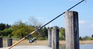 Best Spinning Rod under 100 Dollars