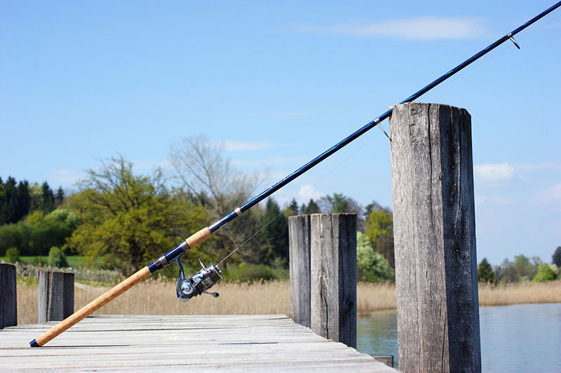 Best Spinning Rod Under 100 Dollars Reviews And Buyer S